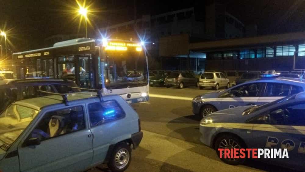 Prende a calci la porta del bus 50enne triestino denunciato - Autobus prima porta ...