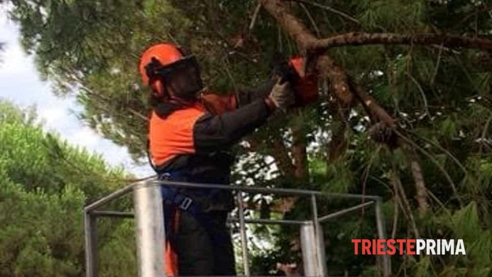 Maltempo protezione civile fvg al lavoro in 60 comuni - Contributo regionale fvg prima casa 2017 ...